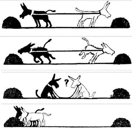 2 ânes 3