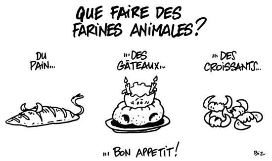 farine-2